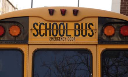 Do you know the meaning of School Bus safety lights?