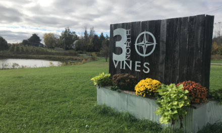3 North Vines brings Wine Country to Blue Water Area
