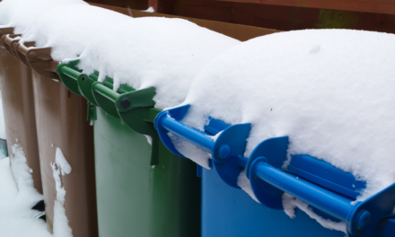 Early Snowfall Delays Leaf and Trash Pickup
